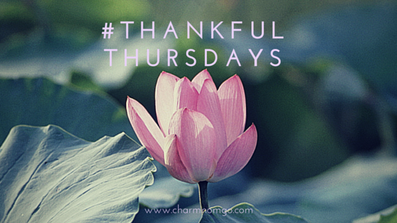 #Thankful Thursdays